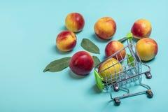 Nya skördade nektariner, platta, lämnar lögnrundan på den naturliga persikan för den rosa keratinen för bakgrundsgrönsakvitaminet royaltyfria foton
