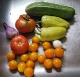 Nya skördgrönsaker från trädgården royaltyfri foto