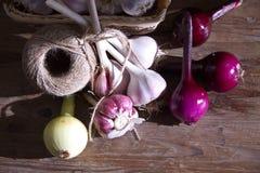 Nya skördgrönsaker, vitlök och lökar royaltyfri bild