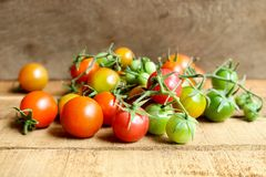 Nya små tomater med den gröna stammen på träbakgrund Arkivbild