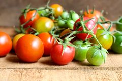 Nya små tomater med den gröna stammen på träbakgrund Fotografering för Bildbyråer