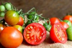 Nya små tomater med den gröna stammen på träbakgrund Royaltyfri Bild