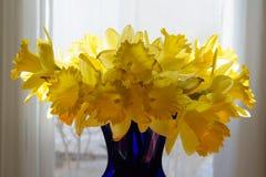 Nya snittvårpåskliljor som framläggas på en abstrakt bakgrund Arkivfoto