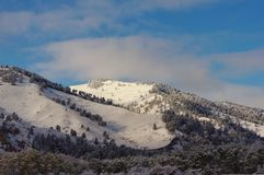 nya snowfall royaltyfri fotografi