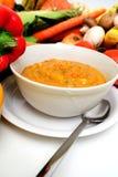 nya soupgrönsakveggies Royaltyfri Bild
