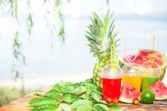 Nya sunda fruktsafter, frukt, ananas, vattenmelon på bakgrunden av havet Sommar vilar, den sunda livsstilkopian Royaltyfri Foto