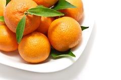 nya tangerines Arkivbilder
