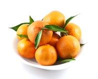 nya tangerines Royaltyfri Fotografi