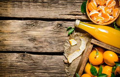 nya tangerines Arkivfoton