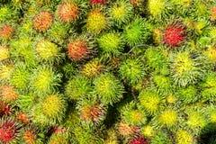 Nya thailändska rambutans Royaltyfria Bilder