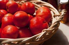 Nya tomater Fotografering för Bildbyråer