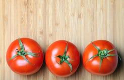 nya tomater Royaltyfri Fotografi