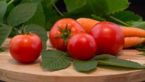 nya tomater för morötter Royaltyfria Foton