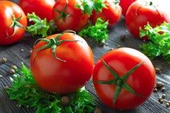 Nya tomater, grönsallat och kryddor på trätabellen arkivbilder
