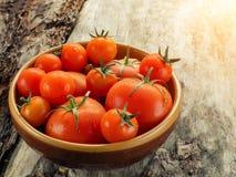 Nya tomater i en bunke på åldrigt trä Arkivbilder