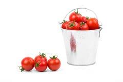 Nya tomater i en hink Arkivbilder