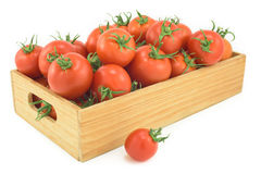Nya tomater i en woden boxas på en vit bakgrund Royaltyfri Foto