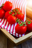 Nya tomater i trämagasin royaltyfri bild