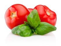 Nya tomater med basilika som isoleras på vit bakgrund arkivfoto