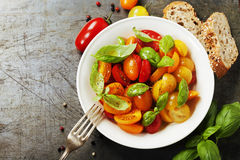 Nya tomater med basilikasidor i en bunke Royaltyfria Foton