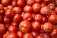 Nya tomater på en marknad Royaltyfri Fotografi