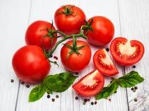 Nya tomater på en tabell Fotografering för Bildbyråer