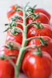 Nya tomater på ett träskrivbord Arkivfoton