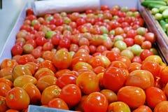 Nya tomater på marknaden royaltyfria foton
