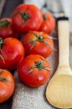Nya tomater på trätabellen Arkivfoton