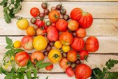 Nya tomater på trätabellen Byröra Arkivbild