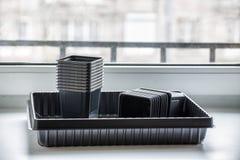 Nya tomma plast- behållare på fönsterbrädan Fotografering för Bildbyråer