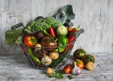 Nya trädgårds- grönsaker - broccoli, zucchinin, aubergine, peppar, beta, tomater, lökar, vitlök - tappningmetallkorg Royaltyfria Foton