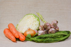 nya trädgårds- kökgrönsaker Royaltyfria Bilder