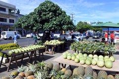 Nya tropiska frukter i Savusavu marknadsför den Vanua Leavu ön Fiji Royaltyfria Foton