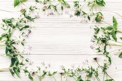 Nya tusenskönalilablommor och grön örtram på vitt trä Arkivbild