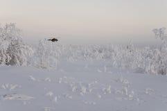 Nya Urengoy, YaNAO, nord av Ryssland Avia för helikopter UTair och Konvers i den lokala flygplatsen på servicen Januari 06, 2017  Royaltyfri Foto