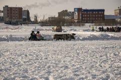 Nya Urengoy, YaNAO, nord av Ryssland Mars 1, 2016 Ferien av den norr nationaliteten Nenets man och norr hjortar i vinterdag Royaltyfria Foton