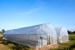 nya växthus Arkivbilder