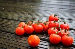 Nya våta tomater på trätabellen Arkivbilder