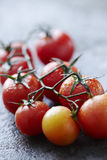 Nya våta tomater på våt stenyttersida Arkivbild