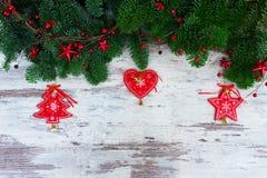 Nya vintergröna trädfilialer för jul Royaltyfri Bild