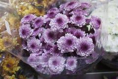 Nya violetta buketter är tillgängliga på marknaden arkivfoto