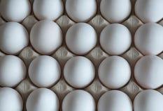 Nya vita ägg, i inpackning från en papp arkivfoton