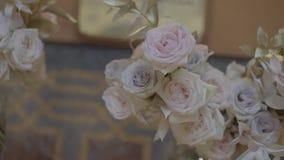 Nya vita och beigea rosor stock video