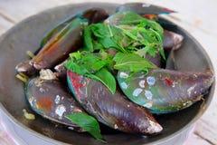 Nya Zeeland mussla- och för mintkaramellsidor recept royaltyfri foto