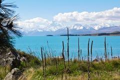 Nya Zeeland sjö pukaki Fotografering för Bildbyråer