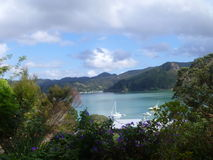 Nya Zeeland Whangaroa Royaltyfri Foto