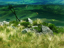 Nyanga Mountains. On a way to the highest peak in Zimbabwe Stock Photo