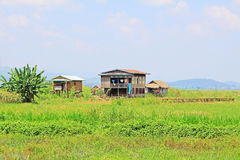 Nyaungshwe Tall House Village, Myanmar. Nyaungshwe Township is a township of Taunggyi District in the Shan State of Myanmar. The principal town is Nyaungshwe Stock Images
