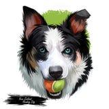 Nyazeeländsk överskrifthund, digital konst för affisch Isolerad waterclorstående av valpinnehavbollen i tänder Spela vovve royaltyfri illustrationer